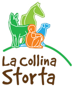 LCS_logo_verticale_clr_fnl_112413